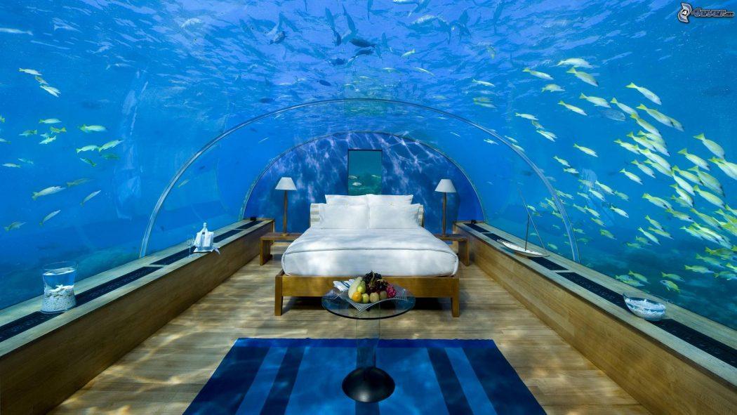 fuera de este mundo bajo el mar pirate ship vallarta blog